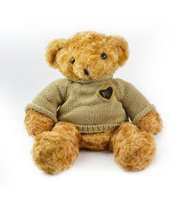 Oso Teddy de peluche